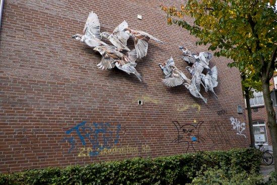 Eindhoven_De_Bergen_04.jpg