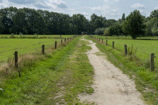 Eindhoven_Genneper_Parken_04.jpg