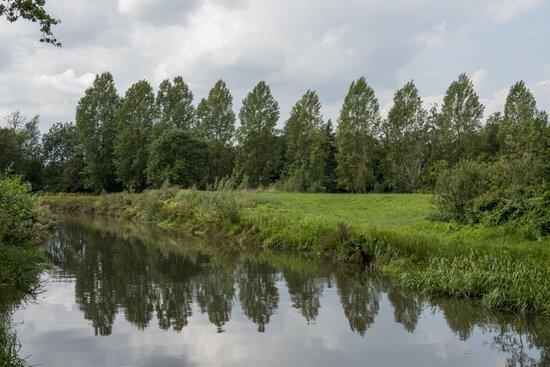 Eindhoven_Genneper_Parken_08.jpg