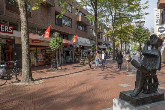 Eindhoven_Hermanus_Boexstraat_03.jpg