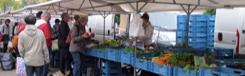 Biologische markt op het Wilhelminaplein